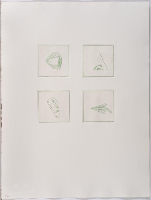 Ref. 2565 de la serie La Pell de la Pell
